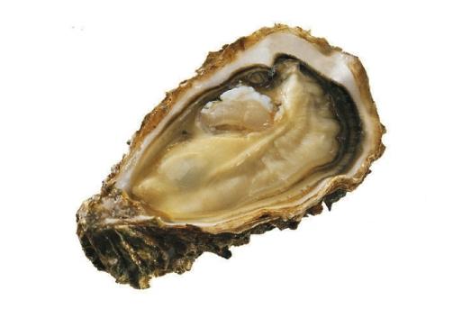 Ostrica Perle Noire 12 pz. - Cadoret